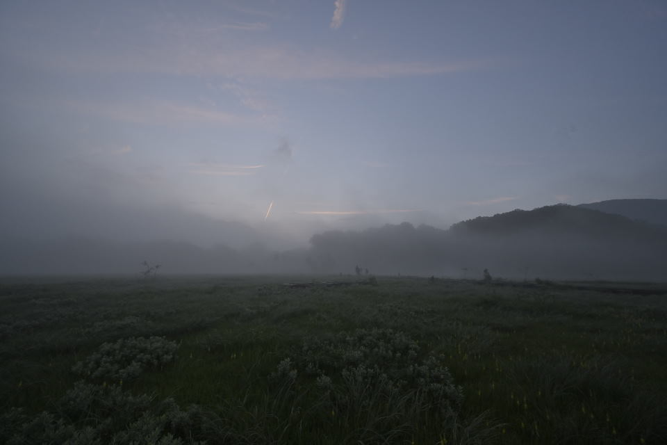 立ち込める朝霧