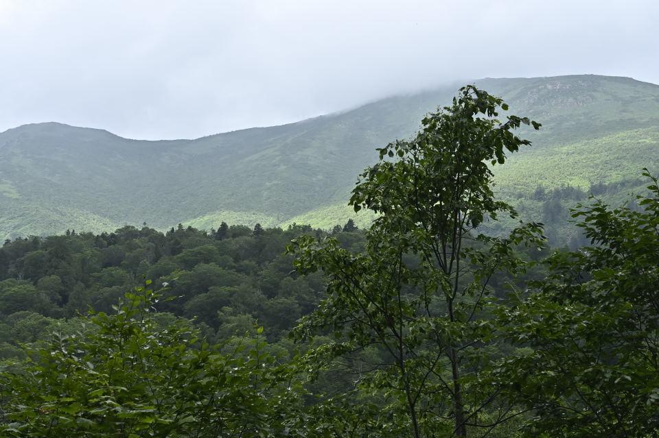 小至仏と至仏山